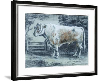Leicestershire Bull, 18th Century-Copleston Warre Bampfylde-Framed Giclee Print