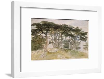 Cedars of Lebanon-Edward Lear-Framed Giclee Print