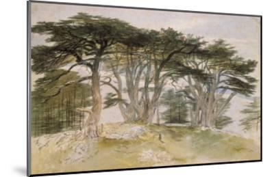 Cedars of Lebanon-Edward Lear-Mounted Giclee Print