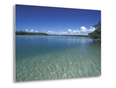 Lovers Key SRA, Ft. Myers Beach, Florida-Maresa Pryor-Metal Print