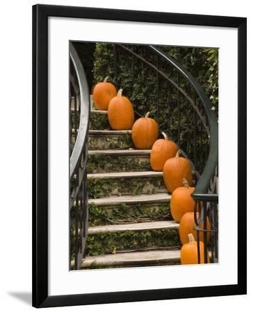 Fall Decorations, Savannah, Georgia-Joanne Wells-Framed Photographic Print