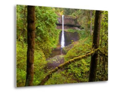 Silver Falls State Park, Salem, Oregon-Darrell Gulin-Metal Print