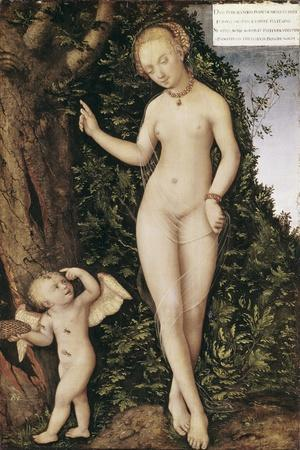 Venus and Cupid with Bee Hive-Lucas Cranach the Elder-Stretched Canvas Print