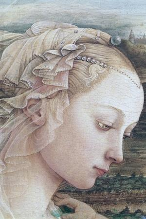 Detail of Madonna and Child-Filippino Lippi-Stretched Canvas Print
