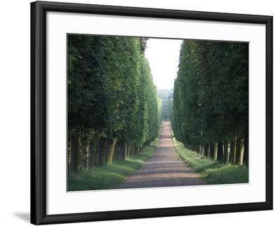 Chateau de Versailles, France-Keith Levit-Framed Photographic Print