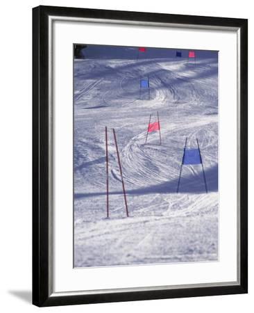 Slalom Ski Race Course-Bob Winsett-Framed Photographic Print