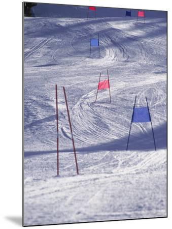 Slalom Ski Race Course-Bob Winsett-Mounted Photographic Print