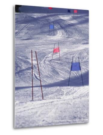 Slalom Ski Race Course-Bob Winsett-Metal Print