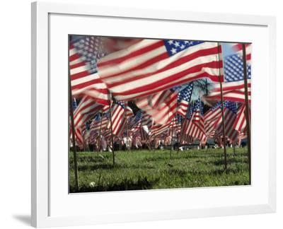 Grassy Field with American Flags Stuck in Ground-Kevin Leigh-Framed Photographic Print