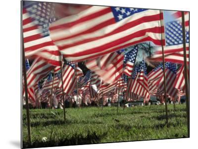Grassy Field with American Flags Stuck in Ground-Kevin Leigh-Mounted Photographic Print