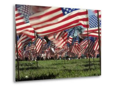 Grassy Field with American Flags Stuck in Ground-Kevin Leigh-Metal Print