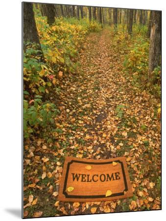 Welcome Mat on Forest Trail-Kevin Law-Mounted Photographic Print