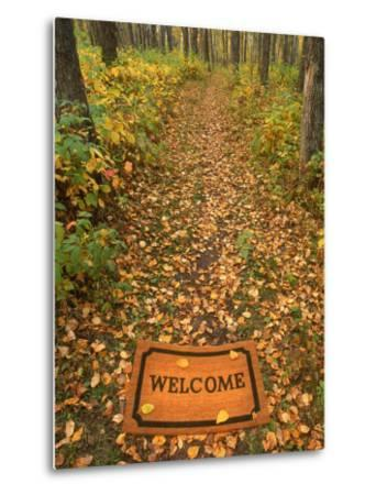 Welcome Mat on Forest Trail-Kevin Law-Metal Print