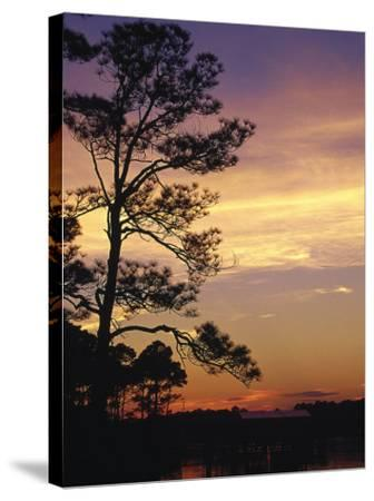 Cotton Bayou at Sunset, Orange Beach, AL-Jeff Greenberg-Stretched Canvas Print