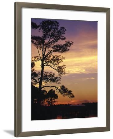 Cotton Bayou at Sunset, Orange Beach, AL-Jeff Greenberg-Framed Photographic Print