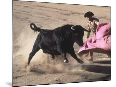 Matador with Pink Cape and Bull, Mexico-Edward Slater-Mounted Photographic Print
