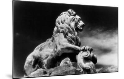 Statue of a Lion, City Gates, Arles, Provence, France-Simon Marsden-Mounted Giclee Print