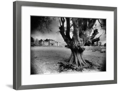 Woodlawn House, County Galway, Ireland-Simon Marsden-Framed Giclee Print