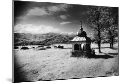 Roadside Shrine, Entrance to the Carpathian Mountains, Romania-Simon Marsden-Mounted Giclee Print