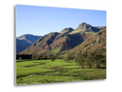 Langdale Valley in the Lake District, UK-David Clapp-Metal Print