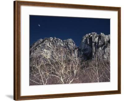 Seneca Rocks State Park, WV-Jeff Greenberg-Framed Photographic Print
