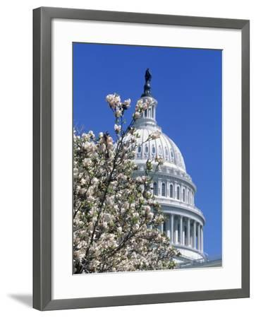 Capitol Building, Washington, DC-Mark Gibson-Framed Photographic Print