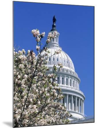 Capitol Building, Washington, DC-Mark Gibson-Mounted Photographic Print