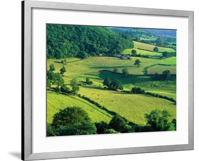 Rolling Countryside-Peter Adams-Framed Photographic Print