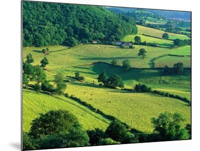 Rolling Countryside-Peter Adams-Mounted Photographic Print