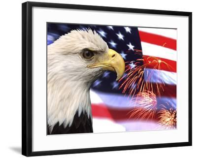 Eagle, Firework, Patriotism in the USA-Bill Bachmann-Framed Photographic Print