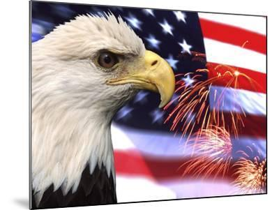 Eagle, Firework, Patriotism in the USA-Bill Bachmann-Mounted Photographic Print