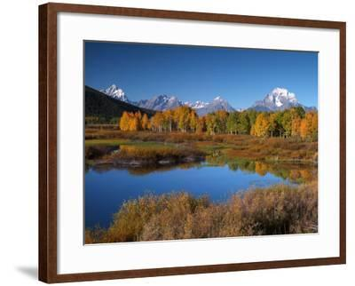 Yellowstone National Park Along the Lewis River-Bob Winsett-Framed Photographic Print
