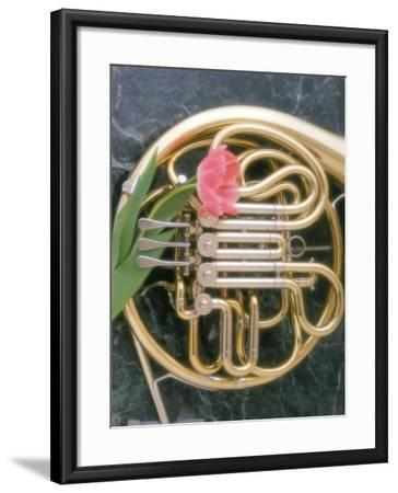 French Horn with a Tulip-Martin Fox-Framed Photographic Print