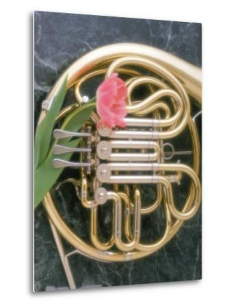 French Horn with a Tulip-Martin Fox-Metal Print