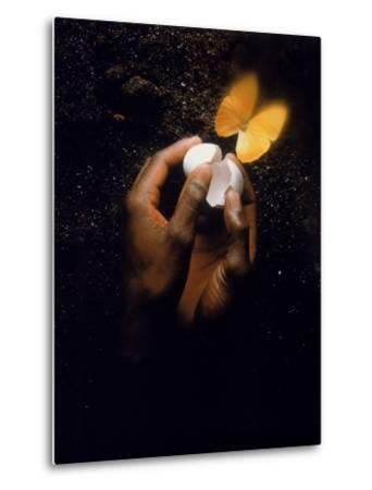 Hand with Egg Shell and Butterfly-Howard Sokol-Metal Print