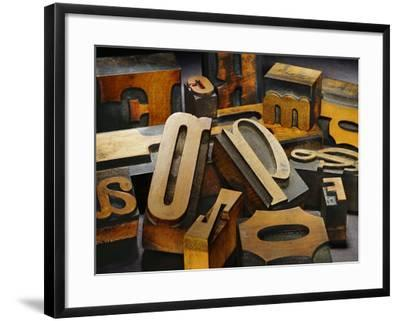 Wood Types-Martin Paul-Framed Photographic Print