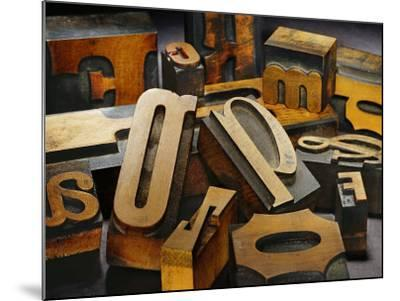 Wood Types-Martin Paul-Mounted Photographic Print