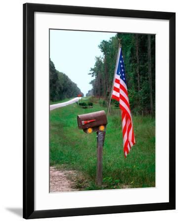 American Flag on Rural Mailbox, North Florida-Pat Canova-Framed Photographic Print