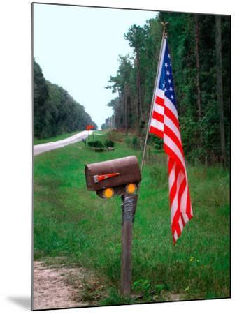 American Flag on Rural Mailbox, North Florida-Pat Canova-Mounted Photographic Print