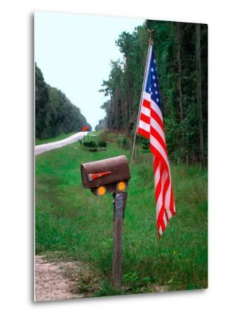 American Flag on Rural Mailbox, North Florida-Pat Canova-Metal Print