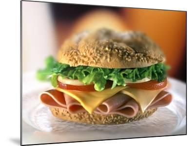 Ham and Cheese Sandwich-ATU Studios-Mounted Photographic Print