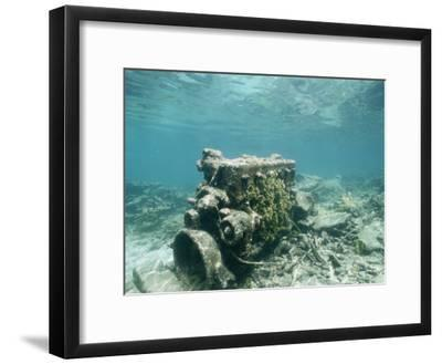 An Encrusted Diesel Engine Sits on the Ocean Floor-Wolcott Henry-Framed Photographic Print