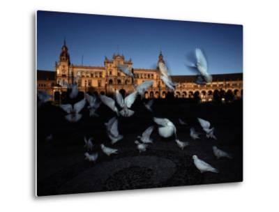 Pigeons in a Square in Seville-Steve Winter-Metal Print