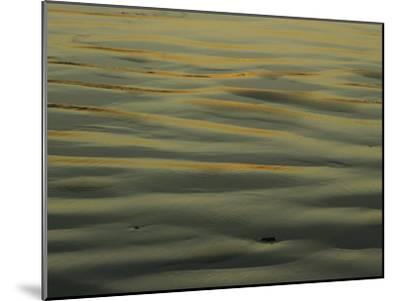 Sunlight Reflects off of Sand Ripples on a Tidal Flat in Tasmania-Jason Edwards-Mounted Photographic Print