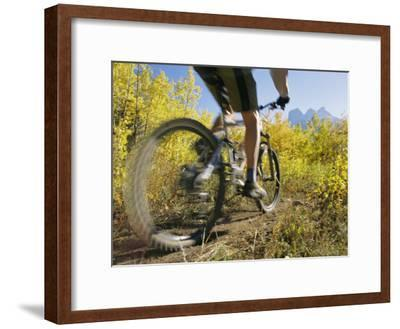 Cyclist Rides Mountain Bike Among Trees with Autumn Foliage-Mark Cosslett-Framed Photographic Print