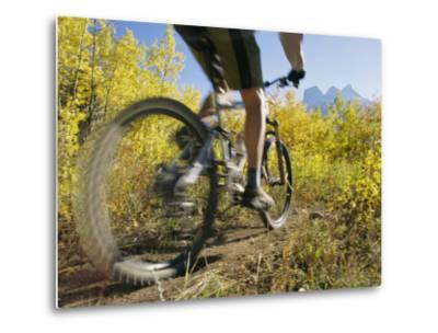 Cyclist Rides Mountain Bike Among Trees with Autumn Foliage-Mark Cosslett-Metal Print