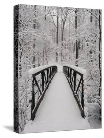 A View of a Snow-Covered Bridge in the Woods-Richard Nowitz-Stretched Canvas Print