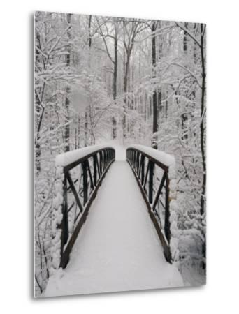 A View of a Snow-Covered Bridge in the Woods-Richard Nowitz-Metal Print