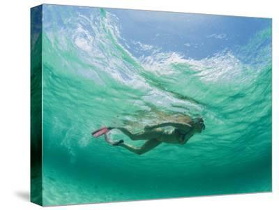 A Woman Snorkels under the Waves-Barry Tessman-Stretched Canvas Print