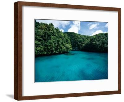 A Tropical Scene-Heather Perry-Framed Photographic Print